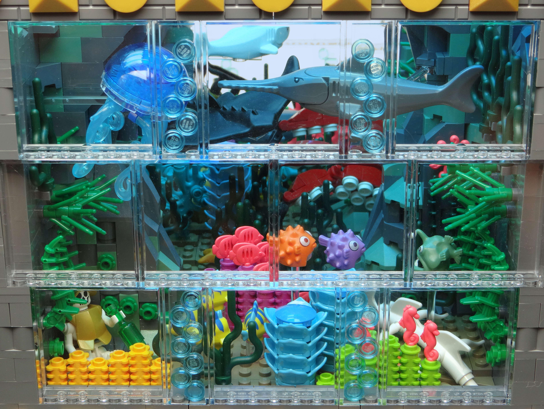 locke-lamora-chess15-coral